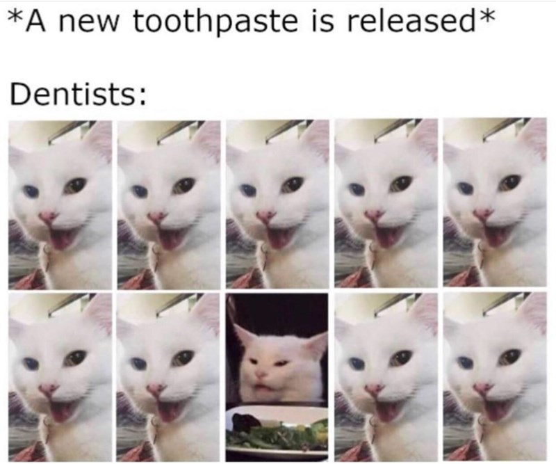 meme - Cat - *A new toothpaste is released* Dentists: