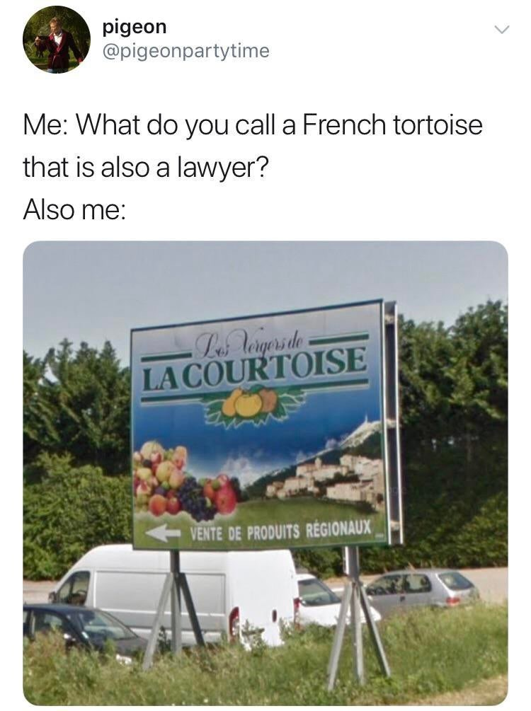 """Tweet that reads, """"Me: What do you call a French tortoise that is also a lawyer? Also me: LACOURTOISE"""""""
