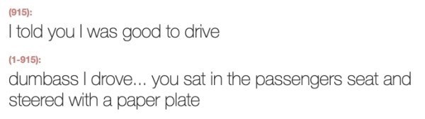 Text - (915): I told you I was good to drive (1-915): dumbass I drove... you sat in the passengers seat and steered with a paper plate