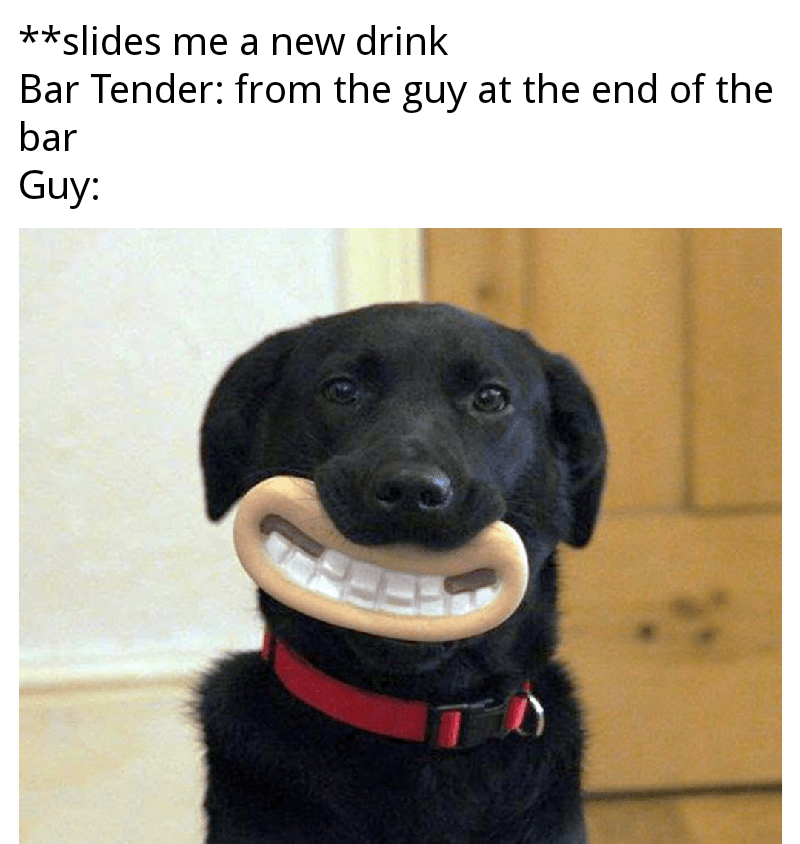 Dog - **slides me a new drink Bar Tender: from the guy at the end of the bar Guy