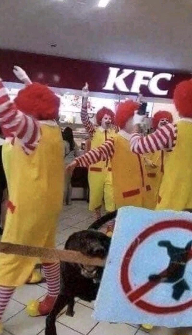 Yellow - KFC