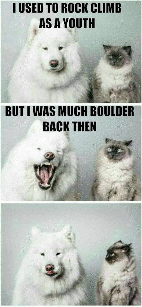 Samoyed - I USED TO ROCK CLIMB AS A YOUTH BUTI WAS MUCH BOULDER BACK THEN