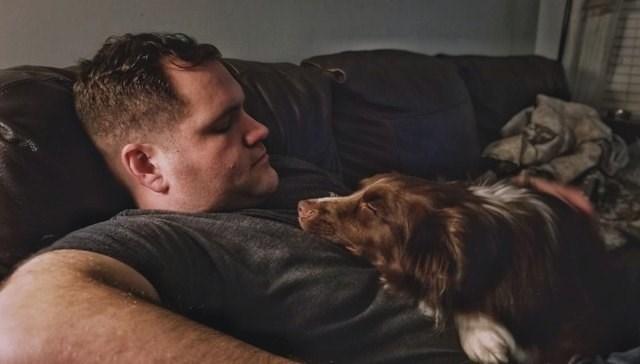 reunion - Dog breed