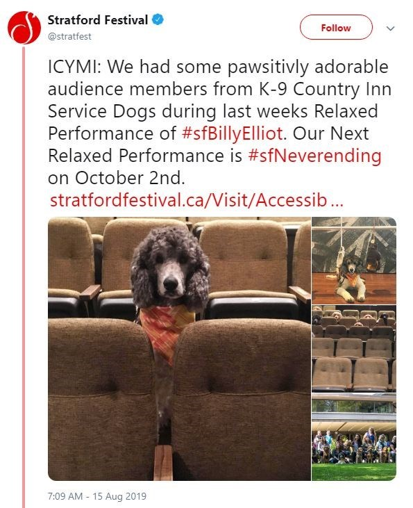 dogs in theater - Dog - Stratford Festival Follow @stratfest ICYMI: We had some pawsitivly adorable audience members from K-9 Country Inn Service Dogs during last weeks Relaxed Performance of #sfBillyElliot. Our Next Relaxed Performance is #sfNeverending on October 2nd stratfordfestival.ca/Visit/Accessib... 7:09 AM 15 Aug 2019