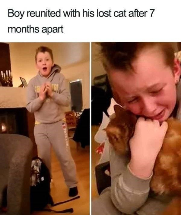 wholesome - Photo caption - Boy reunited with his lost cat after 7 months apart ATALA