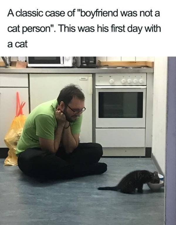 """wholesome - Floor - A classic case of """"boyfriend was not a cat person"""". This was his first day with a cat 0000"""