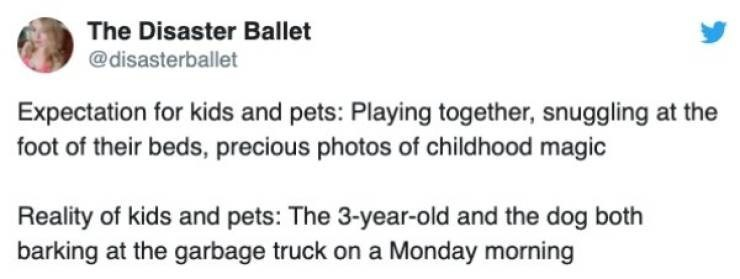 Text - The Disaster Ballet @disasterballet Expectation for kids and pets: Playing together, snuggling foot of their beds, precious photos of childhood magic Reality of kids and pets: The 3-year-old and the dog both barking at the garbage truck on a Monday morning