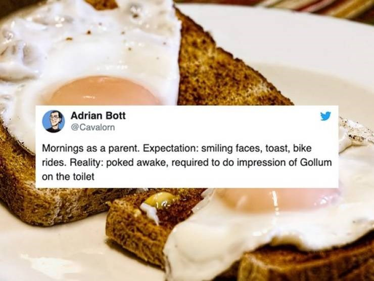 Dish - Adrian Bott @Cavalorn Mornings as a parent. Expectation: smiling faces, toast, bike rides. Reality: poked awake, required to do impression of Gollum on the toilet