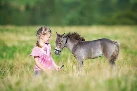 little girl sitting in field with miniature horse