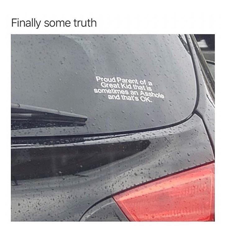 Vehicle - Finally some truth Proud Parent of a Great Kid that is sometimes an Asshole and that's OK