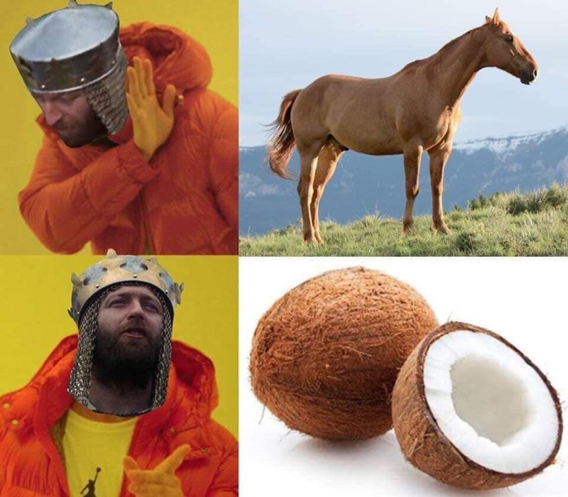 Funny Drakeposting meme about King Arthur preferring coconuts over an actual horse