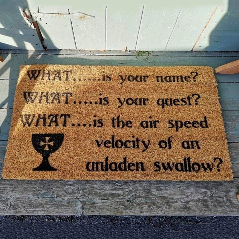 Text - WHAT.s your name? WHAT....is your qaest? WHAT....is the air speed velocity of an anladen swallow?
