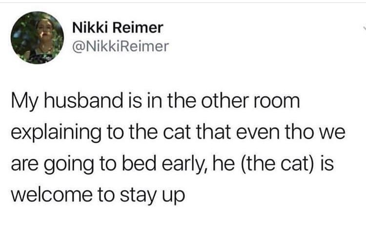 tweet about husband speaking to cat as if it's human