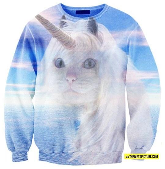 cat photos - 9347077632