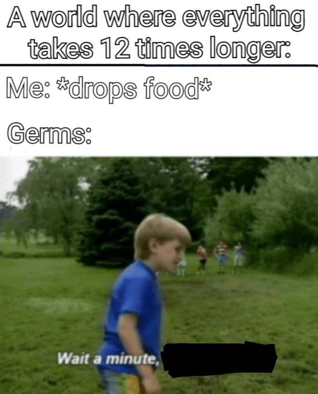 meme - Grass - A world where everything takes 12 times longer Me:drops food Germs: Wait a minute