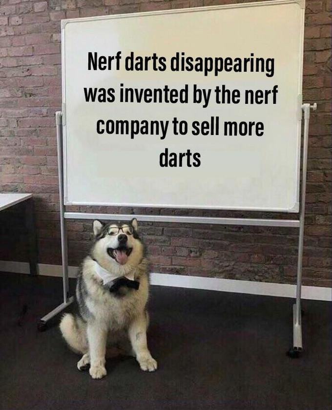 nerf dart - Dog - Nerf darts disappearing was invented by the nerf company to sell more darts