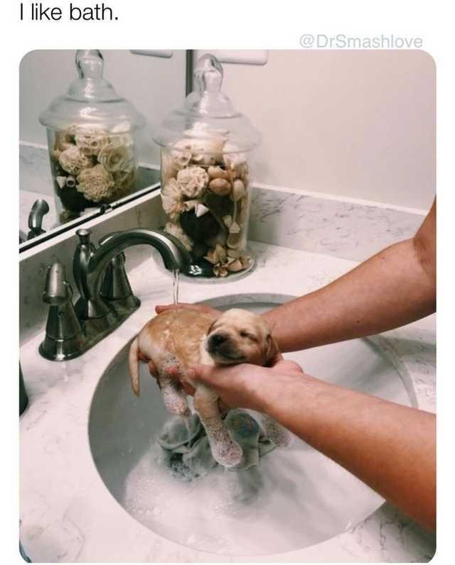 Washing - I like bath @DrSmashlove