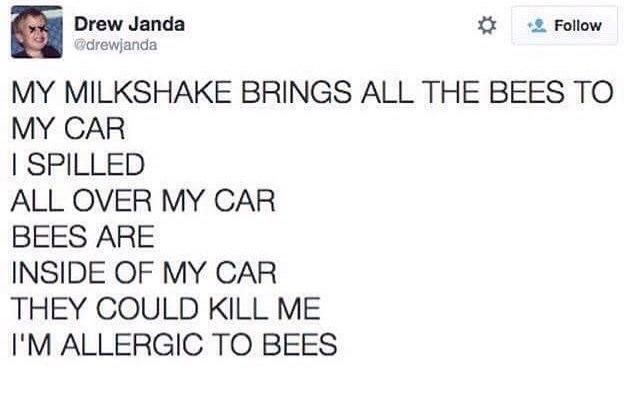 Text - Drew Janda Follow drewjanda MY MILKSHAKE BRINGS ALL THE BEES TO MY CAR I SPILLED ALL OVER MY CAR BEES ARE INSIDE OF MY CAR THEY COULD KILL ME I'M ALLERGIC TO BEES