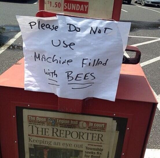 Text - $1.50 SUNDAY Please Do NaT Cse MAchide Filled Winh BEES The Open Legion ball In court THE REPORTER Keeping an eye out Township seeks fix for flood