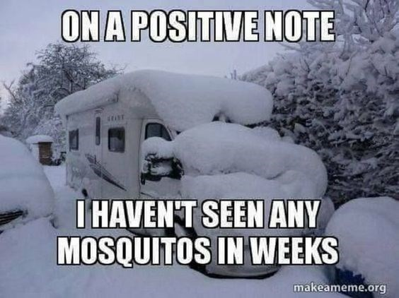 Snow - ONA POSITIVE NOTE HAVENT SEEN ANY MOSQUITOS IN WEEKS makeameme.org