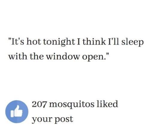 "Text - ""It's hot tonight I think I'll sleep with the window open."" 207 mosquitos liked your post"