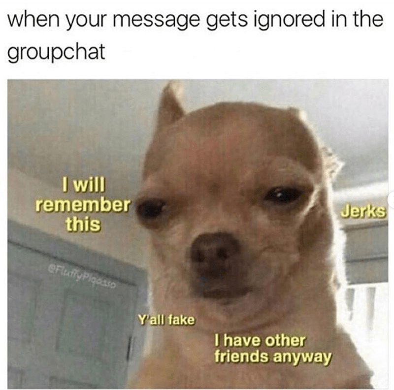 Dog - when your message gets ignored in the groupchat I will remember this Jerks eFlufyPlaasso Yall fake I have other friends anyway