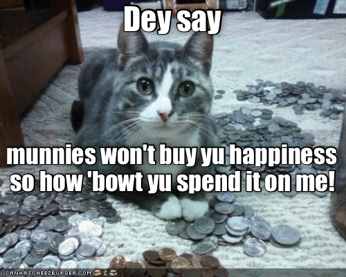 Cat - Dey say munnies won'tbuy yuhappiness so how 'bowt yu spend iton me! ICANHASCHEEZBURGER0OM