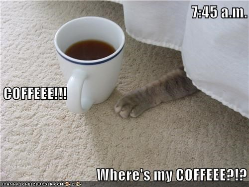 Floor - 7:45 a.m. COFFEEEL!! Where's my COFFEEE? ICANHASCHEE2BURGER coM