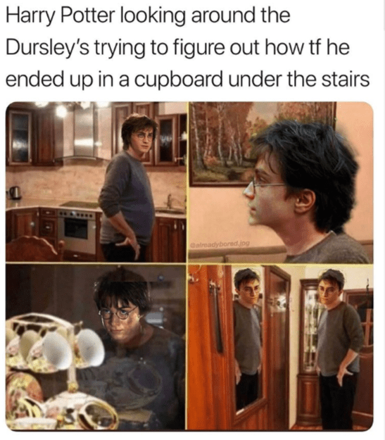 Harry Potter looking around the Dursley's trying to figure out how tf he ended up in a cupboard under the stairs alreadybored.jpg