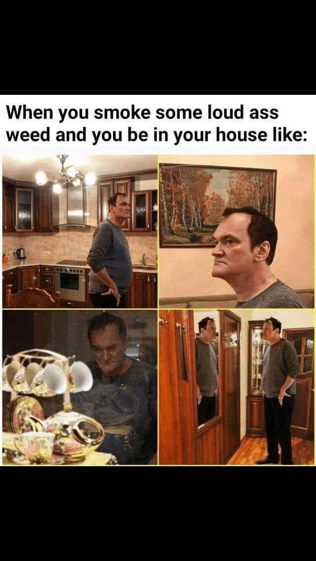 meme - Photo caption - Quentin Tarantino photoshopped - When you smoke some loud ass weed and you be in your house like: