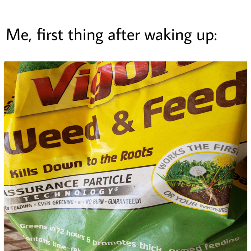 meme - Herbal - Me, first thing after waking up: Vi Weed & Feed WORKS THE FIRS Kills Down to the Roots SSURANCE PARTICLE TECHN OLOGY EVEN GREENING WITH NO BURN GUARANTEED! OR YOUR MONE EN FEEDING Greens in 72 hours & promates thick ontains time-ral rmed feeding