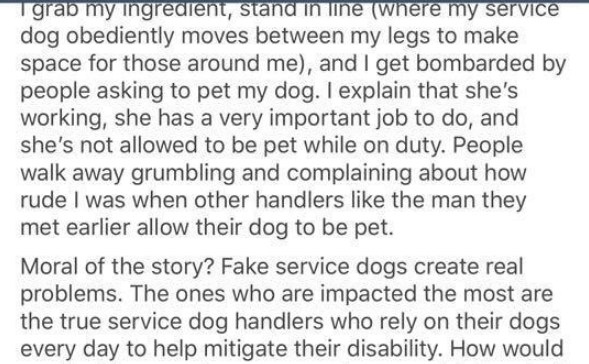 Text - grab my ingredient, stand in line (where my service dog obediently moves between my legs to make space for those around me), and I get bombarded by people asking to pet my dog. I explain that she's working, she has a very important job to do, and she's not allowed to be pet while on duty. People walk away grumbling and complaining about how rude I was when other handlers like the man they met earlier allow their dog to be pet. Moral of the story? Fake service dogs create real problems. Th