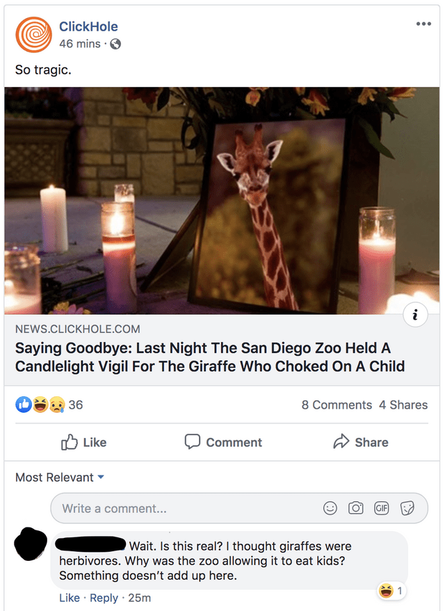 Text - ClickHole 46 mins So tragic. i NEWS.CLICKHOLE.COM Saying Goodbye: Last Night The San Diego Zoo Held A Candlelight Vigil For The Giraffe Who Choked On A Child 8 Comments 4 Shares 36 Like Share Comment Most Relevant GIF Write a comment... Wait. Is this real? I thought giraffes were herbivores. Why was the zoo allowing it to eat kids? Something doesn't add up here. Like Reply 25m