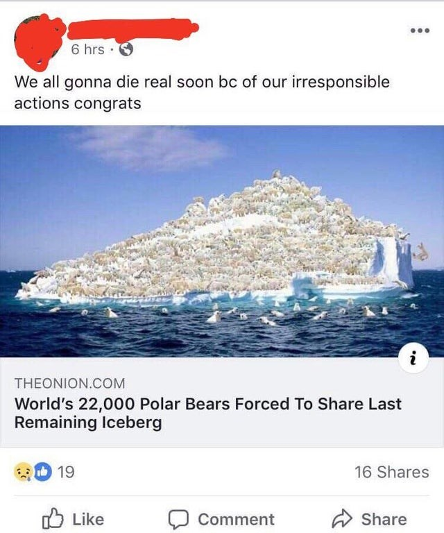 Text - 6 hrs We all gonna die real soon bc of our irresponsible actions congrats THEONION.COM World's 22,000 Polar Bears Forced To Share Last Remaining Iceberg 19 16 Shares Like Comment Share