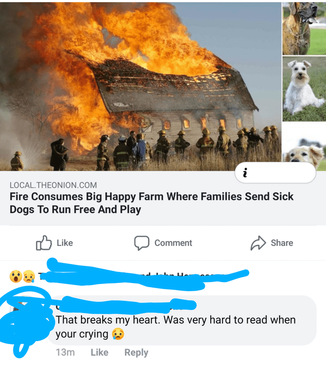 World - LOCAL.THEONION.COM Fire Consumes Big Happy Farm Where Families Send Sick Dogs To Run Free And Play Like Comment Share That breaks my heart. Was very hard to read when your crying 13m Like Reply