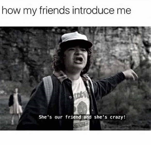 """'Stranger Things' meme - """"How my friends introduce me; She's our friend and she's crazy!"""""""