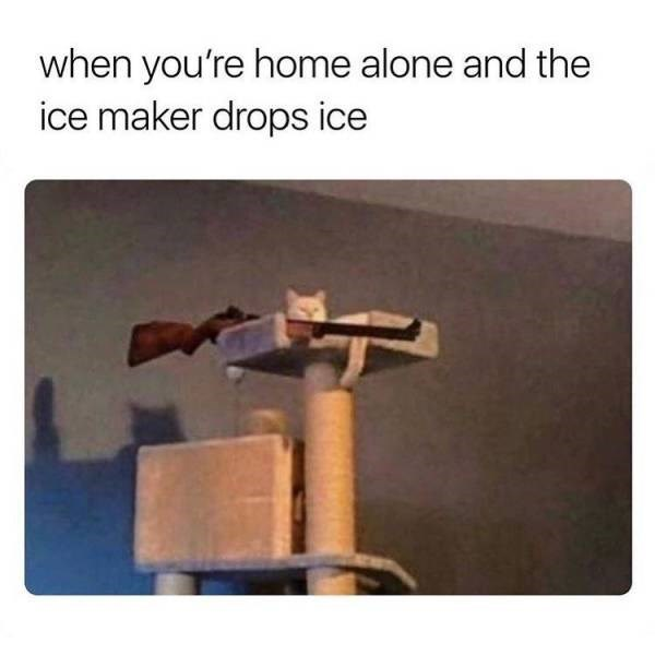 Product - when you're home alone and the ice maker drops ice