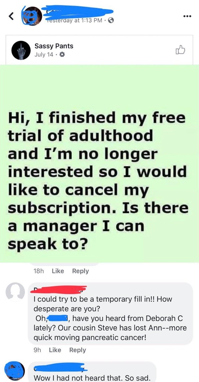 Text - Testerday at 1:13 PM Sassy Pants July 14- Hi, I finished my free trial of adulthood and I'm no longer interested so I would like to cancel my subscription. Is there a manager I can speak to? 18h Like Reply I could try to be a temporary fill in!! How desperate are you? Oh, ,have you heard from Deborah C lately? Our cousin Steve has lost Ann--more quick moving pancreatic cancer! Reply 9h Like Wow I had not heard that. So sad.
