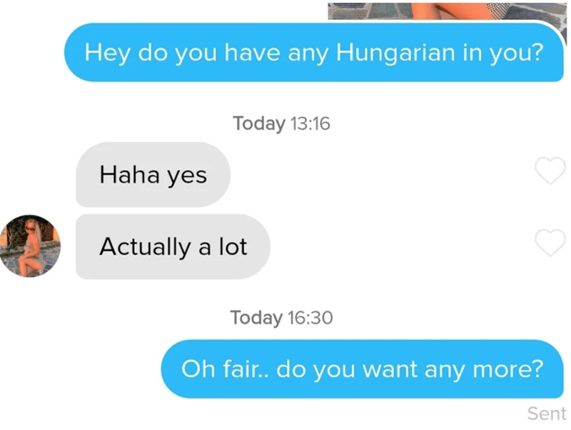tinder - Text - Hey do you have any Hungarian in you? Today 13:16 Haha yes Actually a lot Today 16:30 Oh fair.. do you want any more? Sent