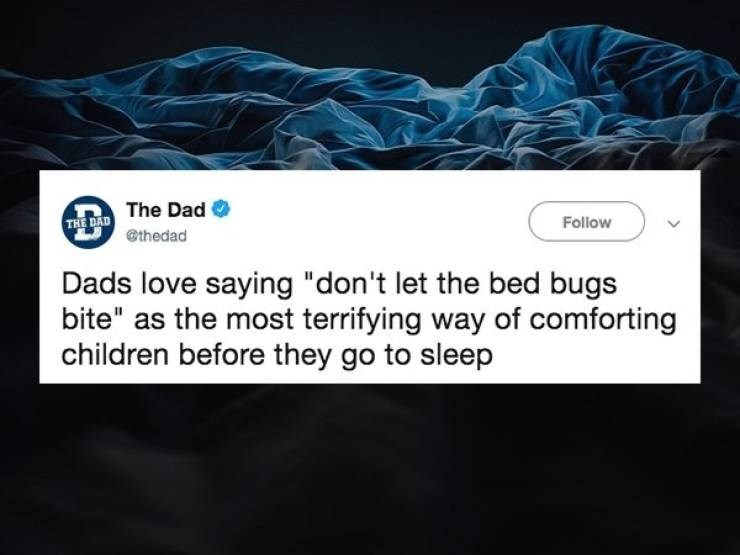 "Text - THE DAD The Dad @thedad Follow Dads love saying ""don't let the bed bugs bite"" as the most terrifying way of comforting children before they go to sleep"