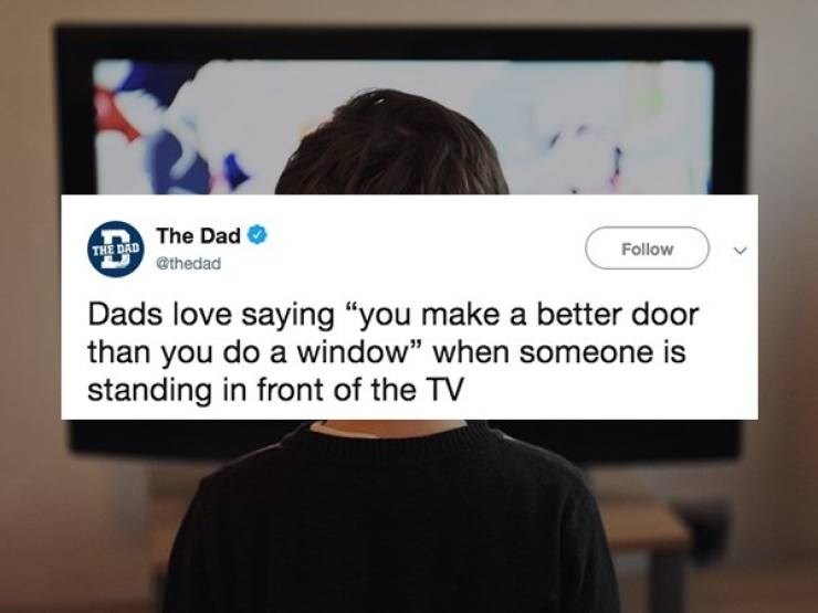 "Text - THE DAD The Dad @thedad Follow Dads love saying ""you make a better door than you do a window"" when someone is standing in front of the TV"