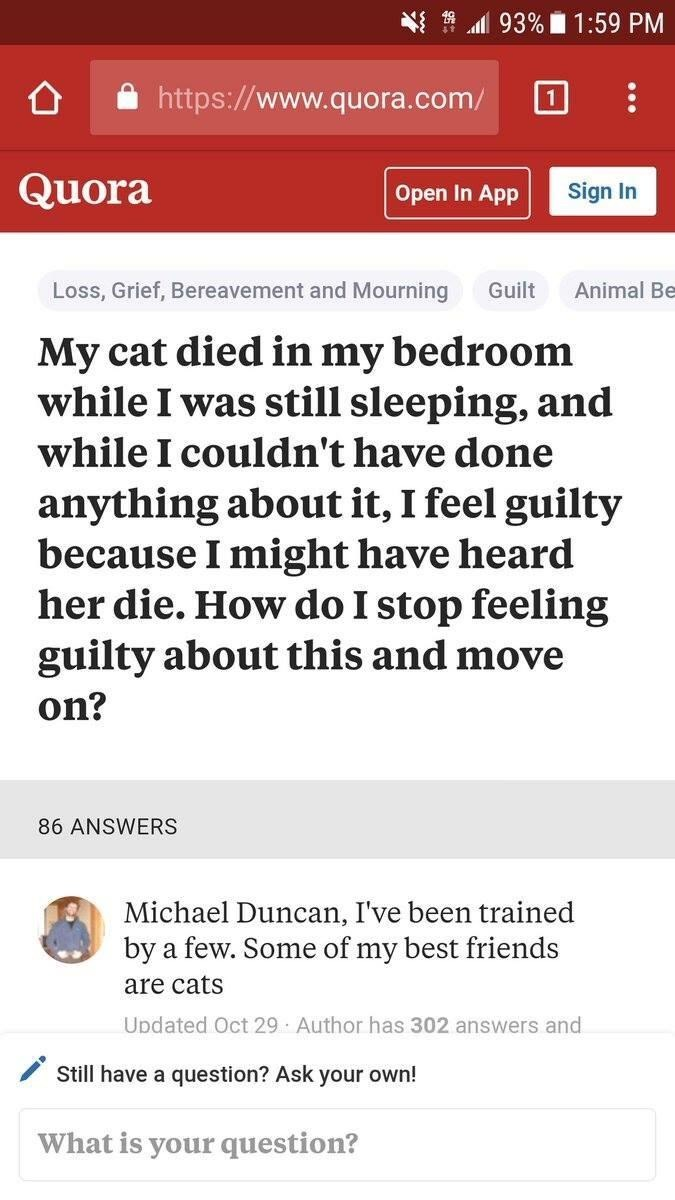 Text - 93% 1:59 PM http://www.quora.com/ Quora Sign In Open In App Loss, Grief, Bereavement and Mourning Animal Be Guilt My cat died in my bedroom while I was still sleeping, and while I couldn't have done anything about it, I feel guilty because I might have heard her die. How do I stop feeling guilty about this and move on? 86 ANSWERS Michael Duncan, I've been trained by a few. Some of my best friends are cats Updated Oct 29 Author has 302 answers and Still have a question? Ask your own! What