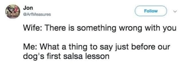 married life - Text - Jon Follow ArfMeasures Wife: There is something wrong with you Me: What a thing to say just before our dog's first salsa lesson
