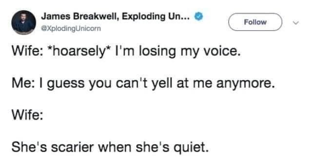 married life - Text - James Breakwell, Exploding Un.. Follow explodingUnicorn Wife: *hoarsely* I'm losing my voice. Me: I guess you can't yell at me anymore. Wife: She's scarier when she's quiet.