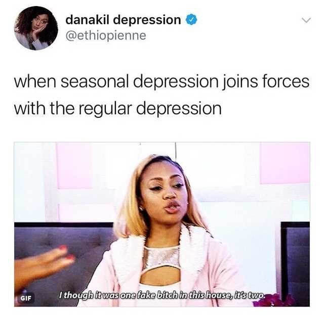 Text - danakil depression @ethiopienne when seasonal depression joins forces with the regular depression I though itwas one fake bitch in this house, it's two. GIF