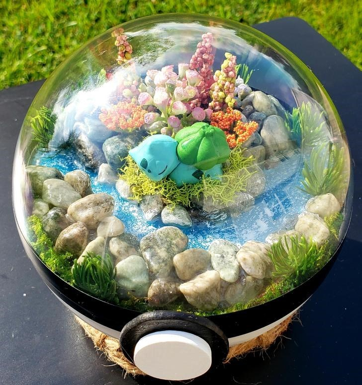 james croft pokemon terrariums - Dish