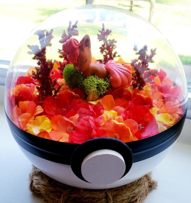 james croft pokemon terrariums - Food
