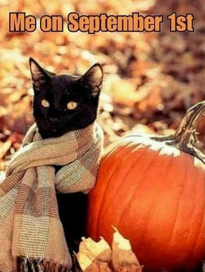 Pumpkin - Me on September 1st