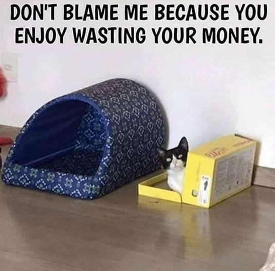 Auto part - DON'T BLAME ME BECAUSE YOU ENJOY WASTING YOUR MONEY.