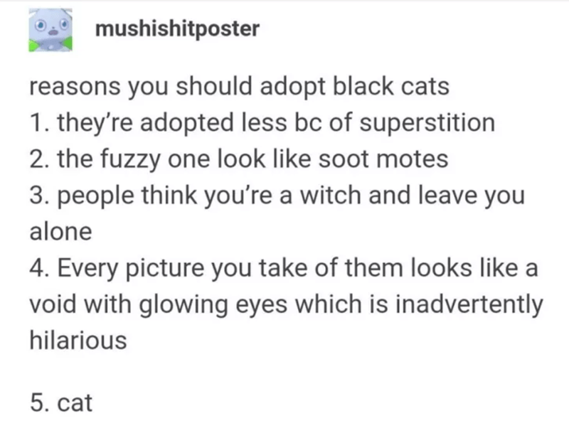 cats tumblr - Text - mushishitposter reasons you should adopt black cats 1. they're adopted less bc of superstition 2. the fuzzy one look like soot motes 3. people think you're a witch and leave you alone 4. Every picture you take of them looks like a void with glowing eyes which is inadvertently hilarious 5. cat